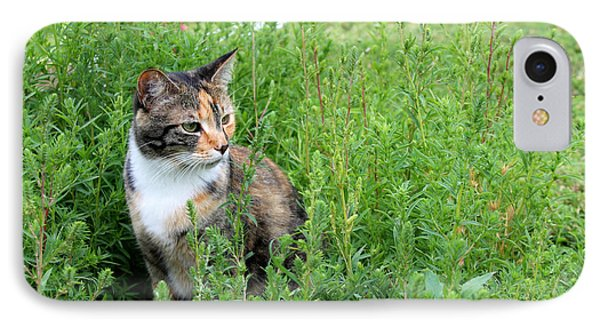 Torbie Landscape IPhone Case