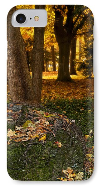 Torch Of Autumn Phone Case by Lee Craig