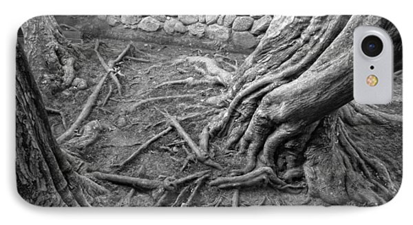 Tormented Trees Of Japan Phone Case by Daniel Hagerman
