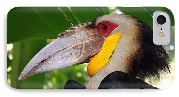 Toucan IPhone Case by Sergey Lukashin