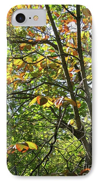 Touch Of Autumn Phone Case by Ann Horn