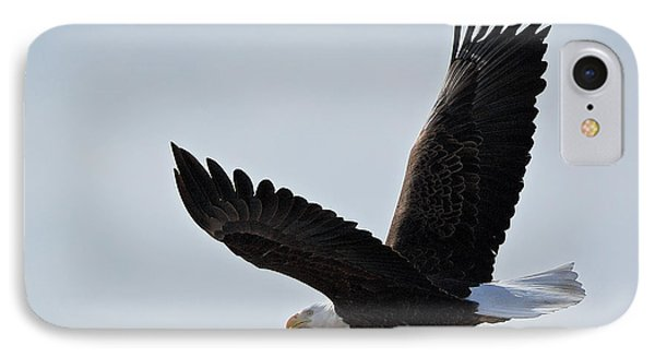 Tower Road Bald Eagle IPhone Case by Stephen  Johnson