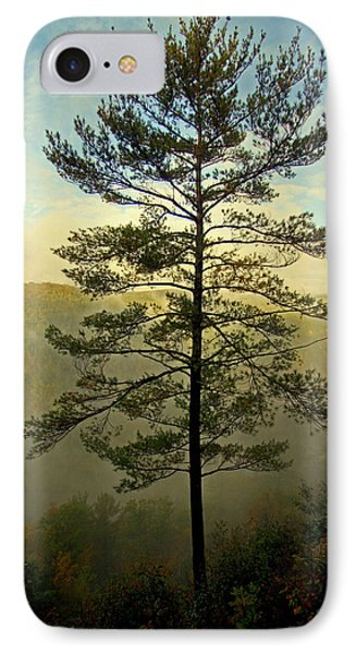 IPhone Case featuring the photograph Towering Pine by Suzanne Stout