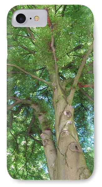 IPhone Case featuring the photograph Towering Tree by Pema Hou