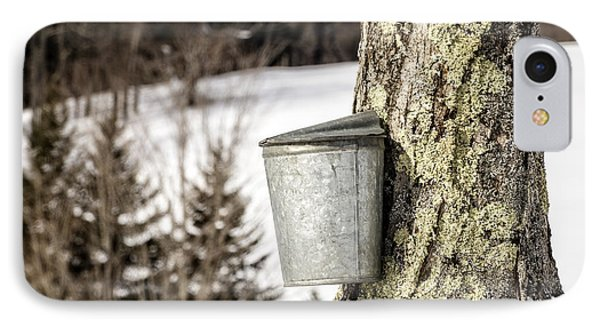 Traditional Sap Bucket On Maple Tree In Vermont IPhone Case by Edward Fielding