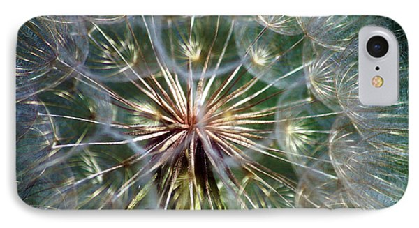 IPhone Case featuring the photograph Tragopogon Dubius Yellow Salsify Flower Fruit Seed by Karon Melillo DeVega