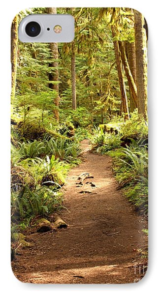 Trail Through The Rainforest IPhone Case by Carol Groenen