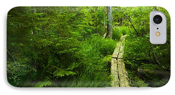 Trail Through The Woods IPhone Case by Diane Diederich
