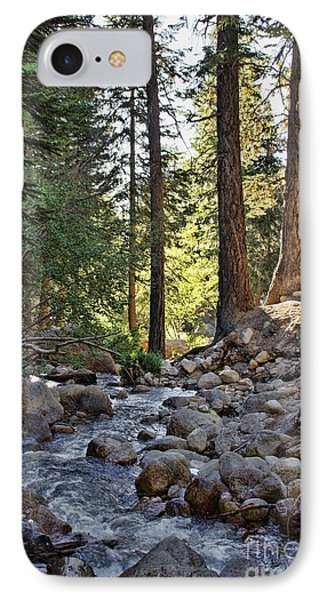 Tranquil Forest Phone Case by Peggy Hughes