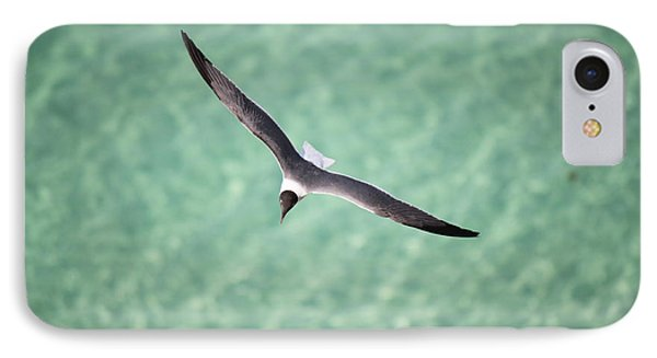 Tranquil Soaring IPhone Case