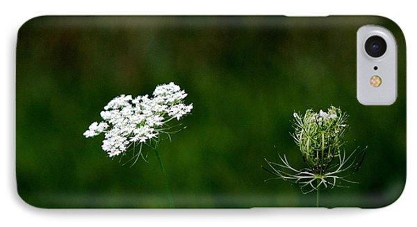 IPhone Case featuring the photograph Transformation  by Ramabhadran Thirupattur