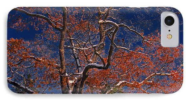 IPhone Case featuring the photograph Tree Against Dark Sky by Andy Lawless