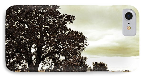 Tree At End Of Runway IPhone Case