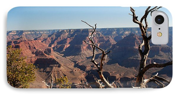 Tree At Grand Canyon IPhone Case by Robert  Moss