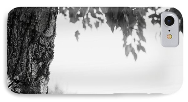 Tree Bark And Leaves IPhone Case by John Rossman