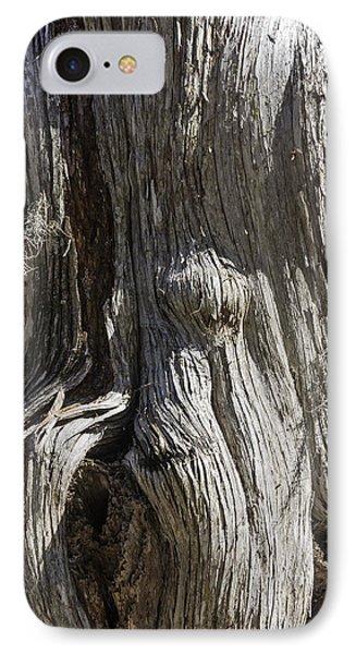Tree Bark No. 3 IPhone Case by Lynn Palmer