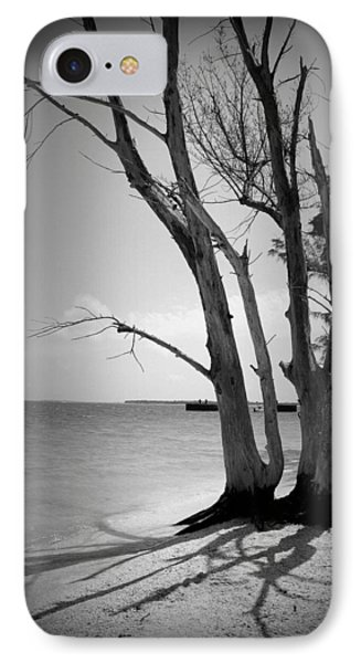 Tree By The Sea IPhone Case by Laurie Perry
