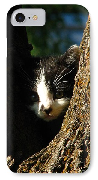 Tree Cat IPhone Case by Greg Patzer
