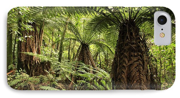 Tree Ferns Phone Case by Les Cunliffe