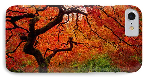 Tree Fire IPhone 7 Case by Darren  White