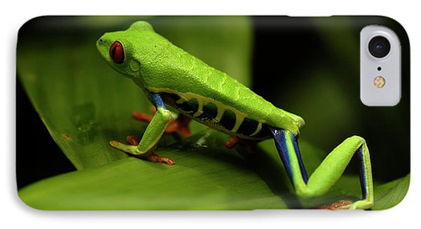 Tree Frog 12 Phone Case by Bob Christopher