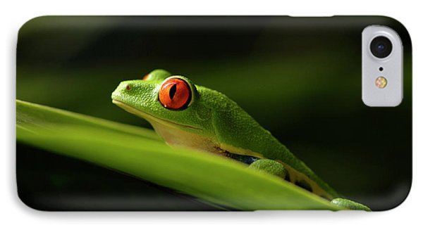 Tree Frog 8 Phone Case by Bob Christopher