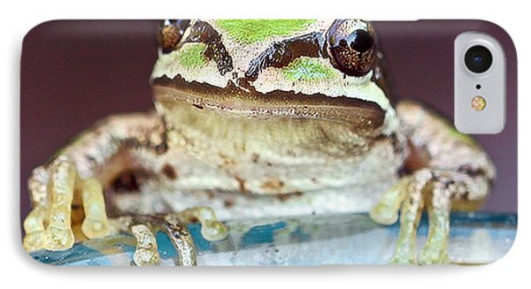 Tree Frog IPhone Case by Jean Noren
