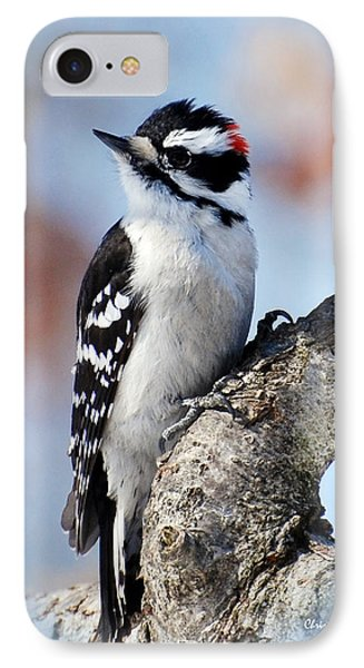 Tree Huggin' Nut Lover Phone Case by Christina Rollo