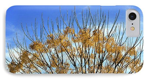Tree In Autumn Against A Cirrus Cloud IPhone Case