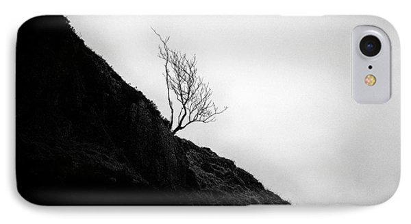 Tree In Mist Phone Case by John Farnan