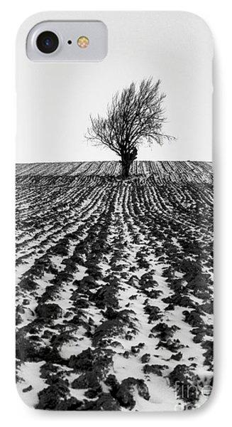 Tree In Snow Phone Case by John Farnan