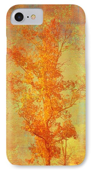 Tree In Sunlight IPhone Case by Suzanne Powers