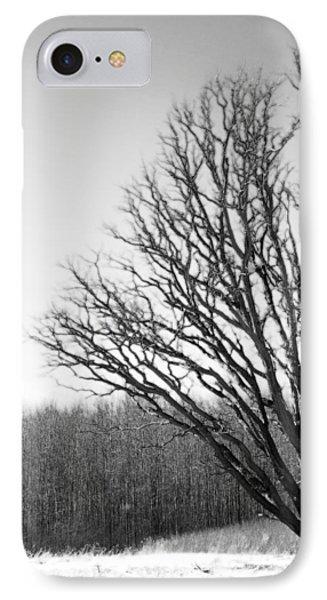 Tree In Winter 2 IPhone Case