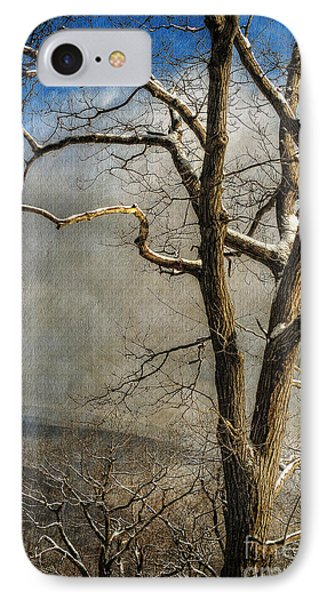 Tree In Winter IPhone Case by Lois Bryan