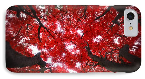 IPhone Case featuring the photograph Tree Light - Maple Leaves Fall Autumn Red by Jon Holiday