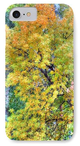 IPhone Case featuring the photograph Tree On Fountain Creek by Lanita Williams