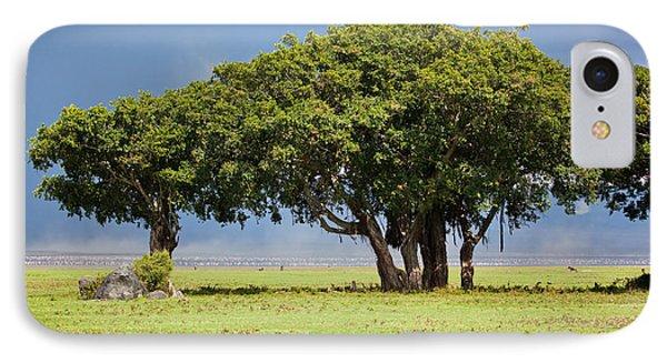 Tree On Savannah. Ngorongoro In Tanzania Phone Case by Michal Bednarek