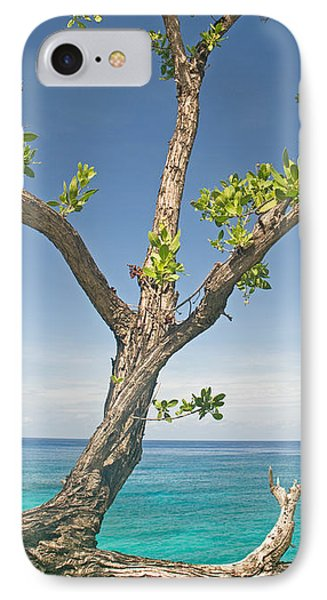 Tree Overhanging Sea At Xtabi Hotel IPhone Case