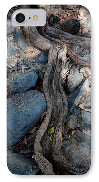 IPhone Case featuring the photograph Tree Root by Carole Hinding