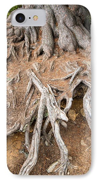 Tree Root IPhone Case