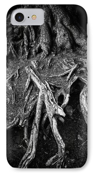 Tree Roots Black And White Phone Case by Matthias Hauser