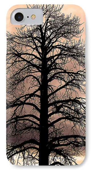 Tree Silhouette IPhone Case by Laurel Powell