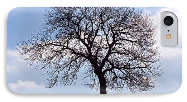 Tree Silhouette Phone Case by Natalie Kinnear