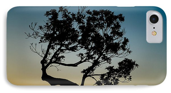 Tree Silhouetted Against The Setting Sun IPhone Case