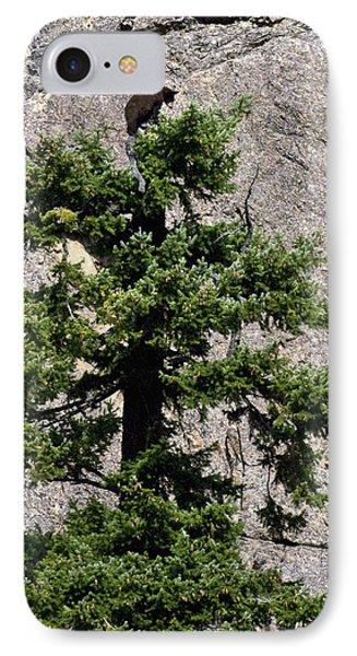 Tree Topper IPhone Case by Randy Giesbrecht