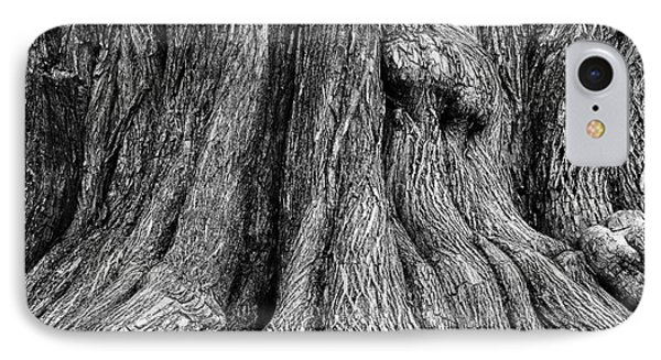 Tree Trunk Closeup IPhone Case