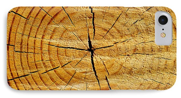 Tree Trunk IPhone Case by Fabrizio Troiani