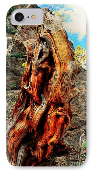 Tree Trunk Phone Case by Kathleen Struckle