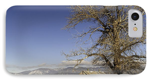 IPhone Case featuring the photograph Tree With Barn by Sue Smith