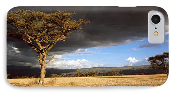 Tree W\storm Clouds Tanzania IPhone Case by Panoramic Images